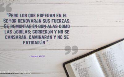 Frases De La Biblia Sobre La Esperanza